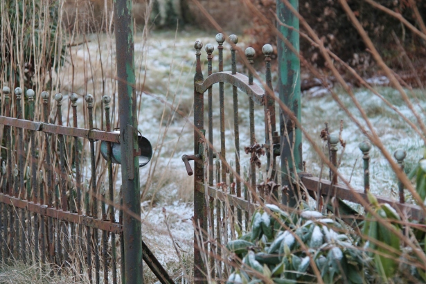 Cosyday: Ich liebe den Winter!